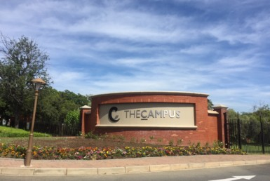 Office-tolet-forrent-The-Campus-rooted-properties-commercial-property-bryanston-office-johannesburg-rent-to-let