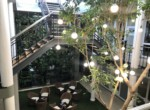 rooted-properties-commercial-office-forsale-rivonia-sandton-tolet-forrent-7wessel-18