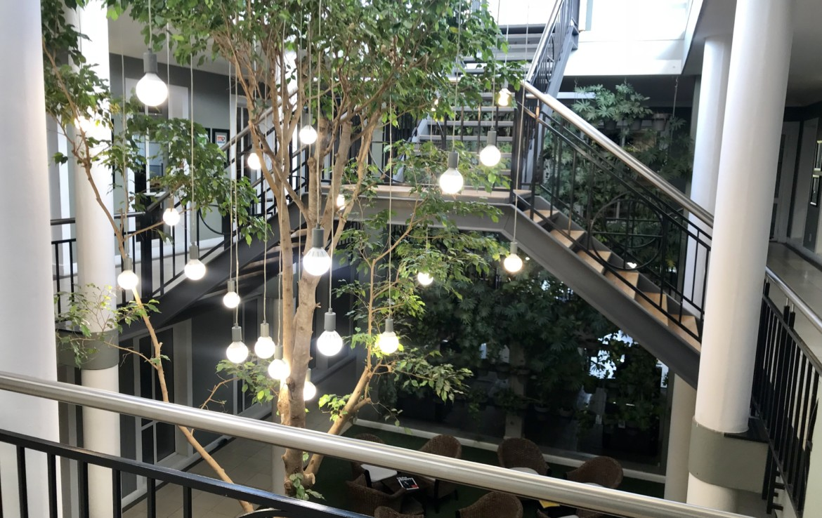rooted-properties-commercial-office-forsale-rivonia-sandton-tolet-forrent-7wessel-13