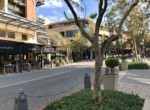 rooted-properties-retail-office-commercial-tolet-forrent-restaurant-offices-shops-melrosearch-sandton00023