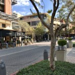 rooted-properties-retail-office-commercial-tolet-forrent-restaurant-offices-shops-melrosearch-sandton00024